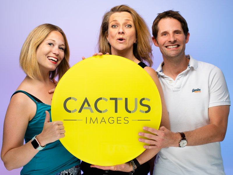 Cactus Images celebrates tenth anniversary with new brand and website launch