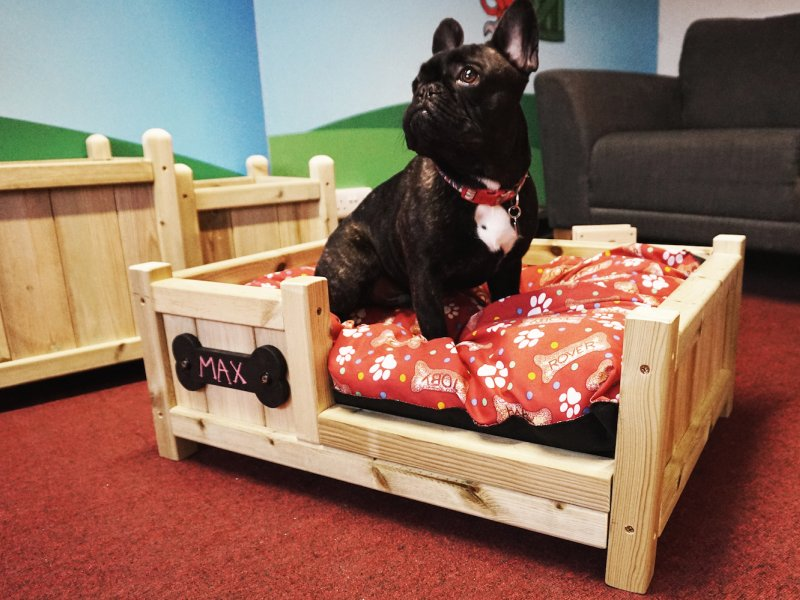 Red Monkey unveils brand new bespoke dog bed as part of product expansion plans!