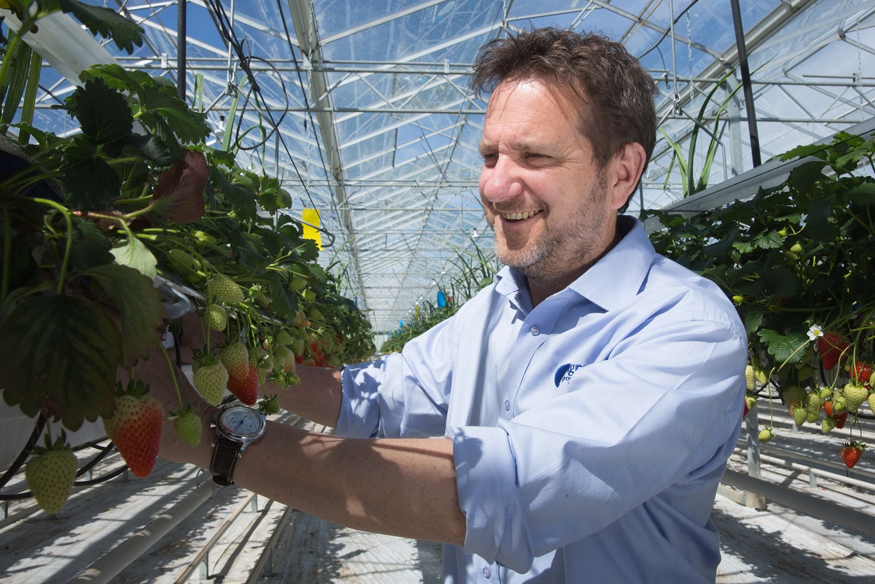 Agrovista sows the seed for future growth with new HR system