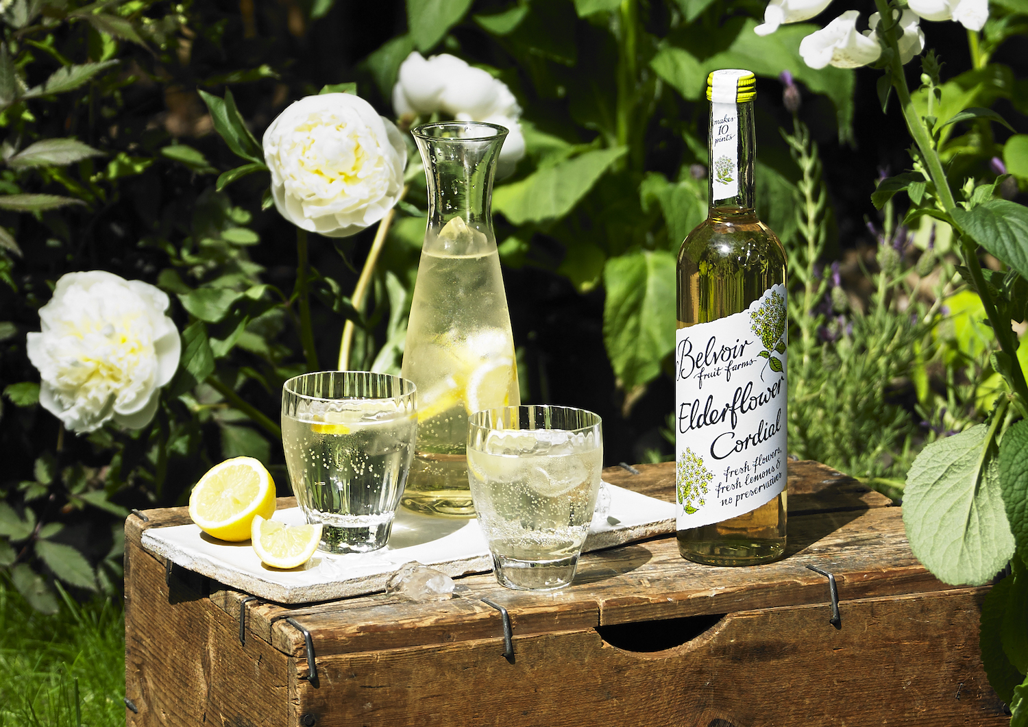 Local community spirit helps Belvoir Fruit Farms meet elderflower harvest demand within two weeks