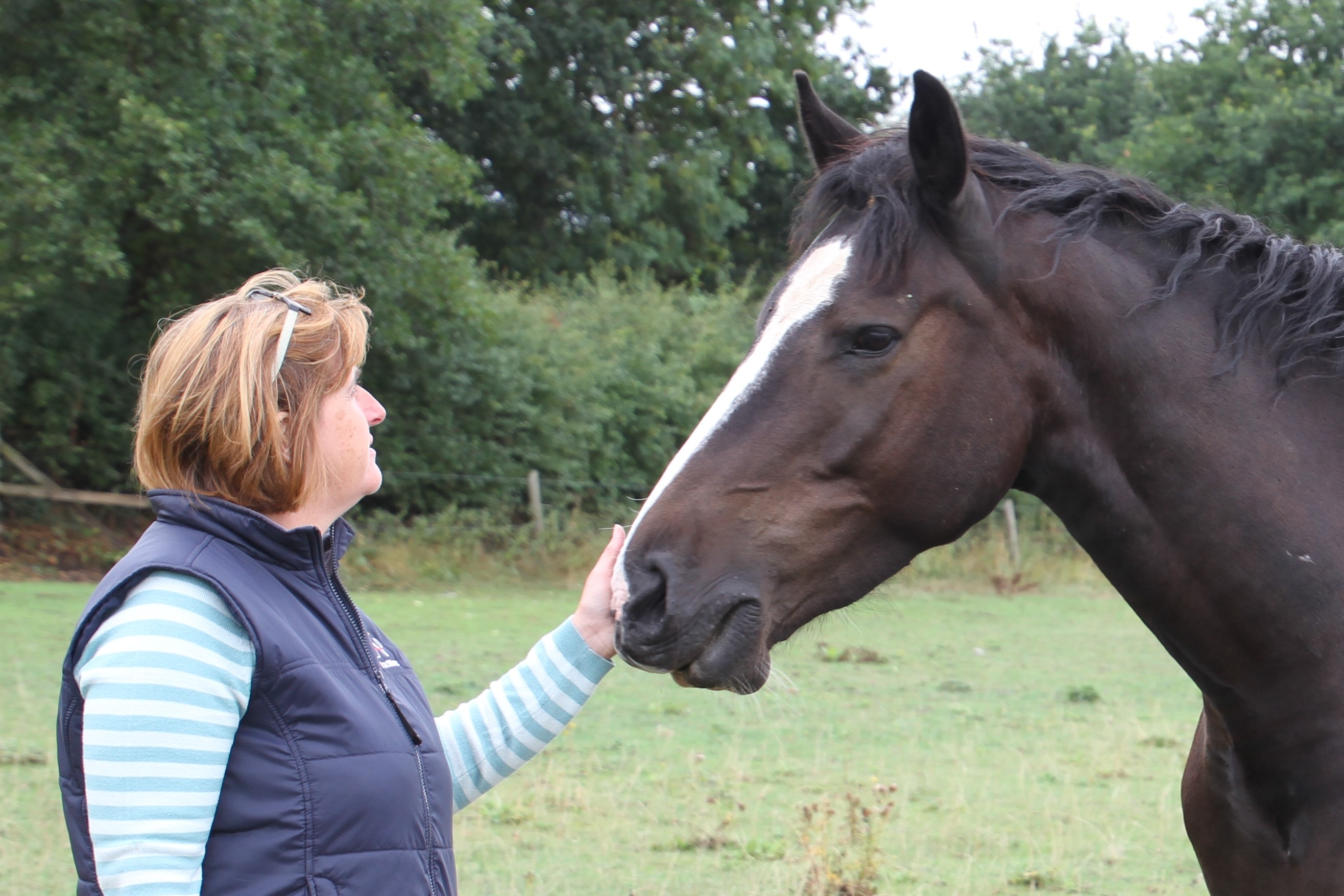 Midlands Riding Centre to Launch Confidence and Wellbeing Coaching using the Natural Herd Instincts of Horses