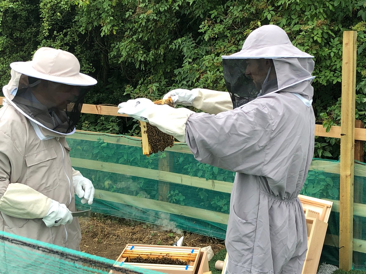 Sweet Smell of Success as Kettering Company's Beehives Produce First honey
