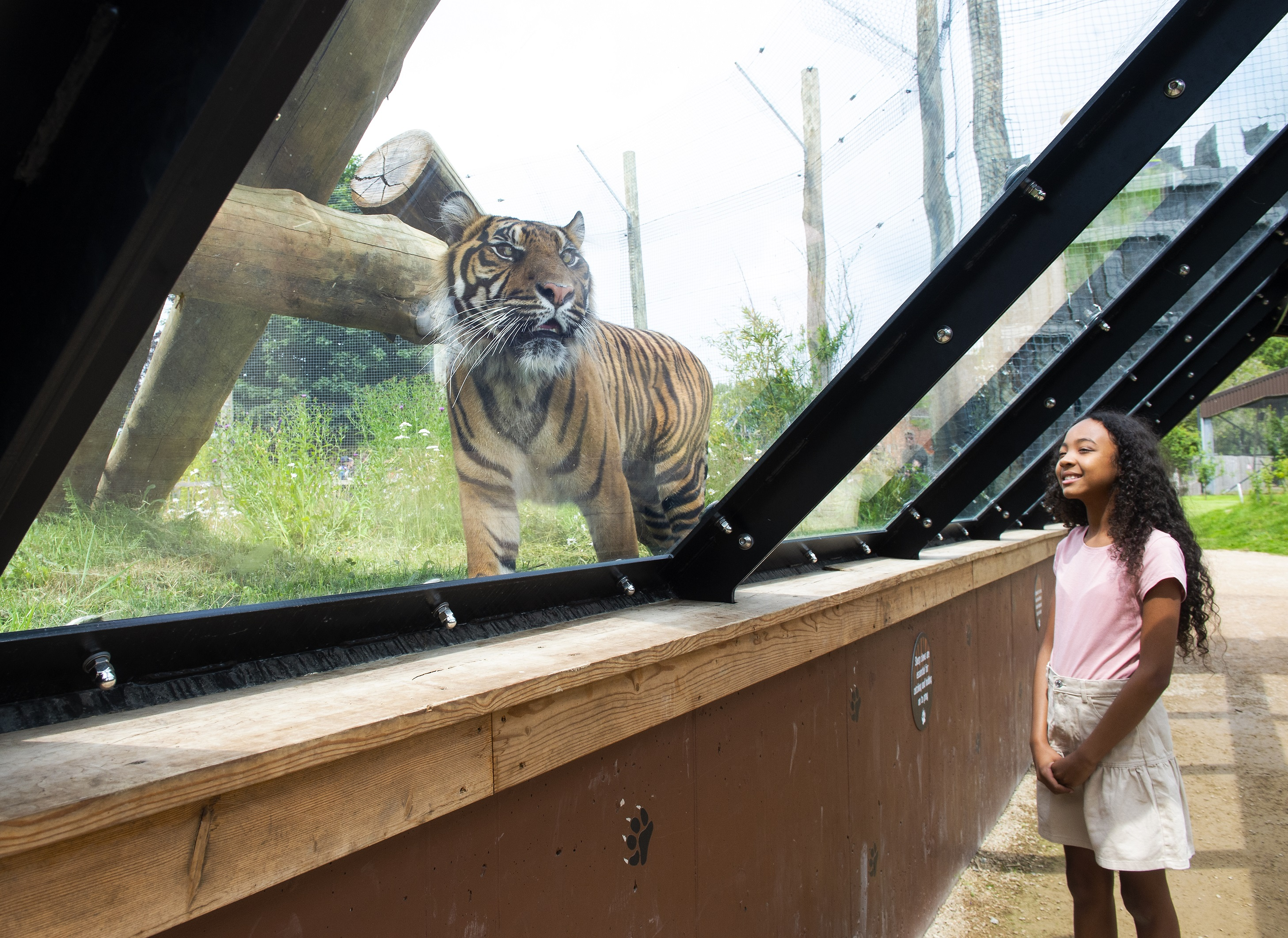 WORLD-RENOWNED TWYCROSS ZOO LAUNCHES SEARCH FOR YOUNG CONSERVATIONISTS IN NOTTINGHAM