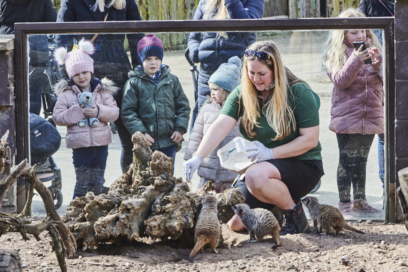 TWYCROSS ZOO BOOSTED BY DONATION FROM AMAZON