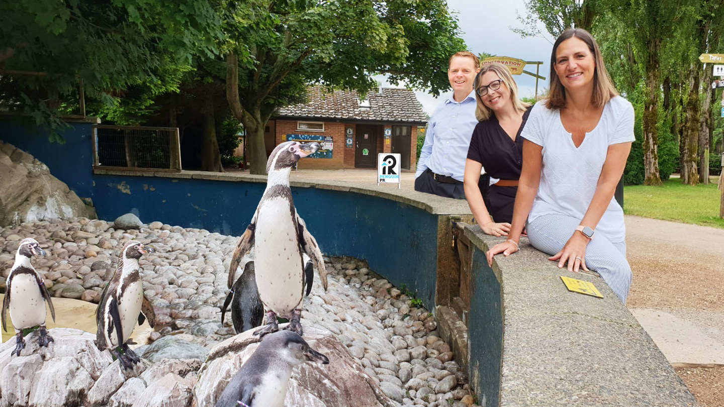 Derby's Penguin PR p-picks up the tab as it agrees to adopt 10 Twycross penguins